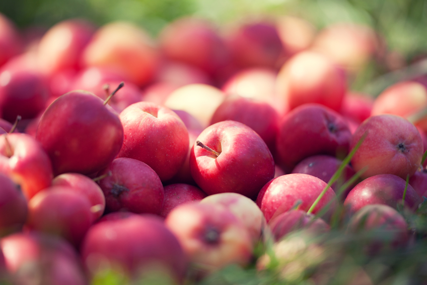 New exciting research on apples – Compounds in Apples